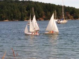 Sawimming Sailors (10)